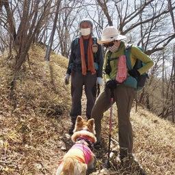 画像 5/8 夕日岳まで、歩いてきたよ~ の記事より 2つ目