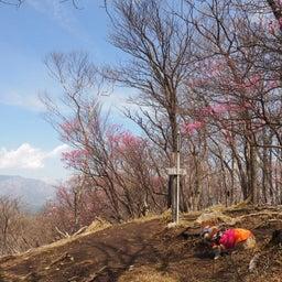 画像 5/8 夕日岳まで、歩いてきたよ~ の記事より 3つ目