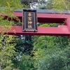 ⌘  お出かけ ⌘    そうだ!熱海へ行こう 〜 パワースポット来宮神社の画像