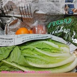 画像 大田市場から直送!お得すぎる「お刺身柵どりセット」と規格外野菜「みためとあじはちがう店」お試し♪ の記事より 10つ目
