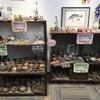 ☆陶器・備前焼の在庫処分セール☆の画像