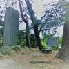 前橋・高崎の二城に登城するの画像