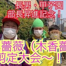 画像 KINKYUJITAI #3-16 の記事より 4つ目