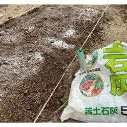 画像 土をふるって苦土石灰 の記事より 5つ目