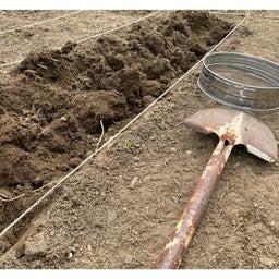 画像 土をふるって苦土石灰 の記事より 3つ目