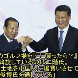 画像 ★年金積立金管理運用独立行政法人(GPIF)が2021年10月から中国国債を購入か? の記事より 5つ目