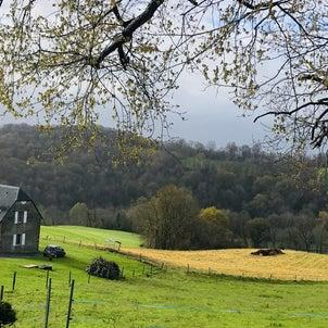 フランスの田舎に移住したくて。【さまよう移住希望者】山暮らし?川のある生活?の画像