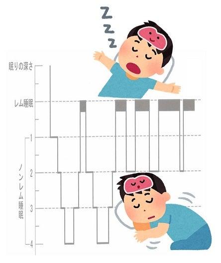 レム睡眠・ノンレム睡眠