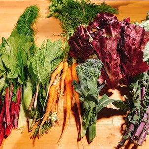 お取り寄せ野菜の画像