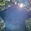 【占い】東国三社代理祈願☆神域レベルの沼尾神社の画像