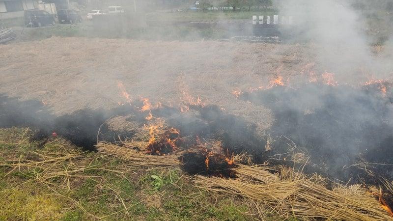 畑 焼き 炉端焼 畑