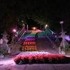 花回廊「虹の架け橋」ライトアップの画像