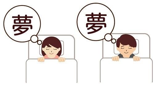 夢を見る・睡眠