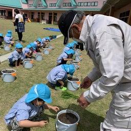 画像 お米作り体験☆ の記事より 3つ目