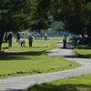 第13回長野県知事杯マレットゴルフ選手権大会の画像