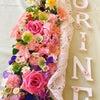 小さなお花畑♡の画像