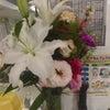 お花がたくさん☺の画像
