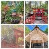 【美しい神社】の画像
