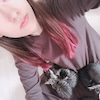 猫と裏話。小田さくらの画像