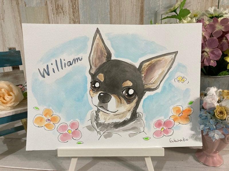 犬の似顔絵 ウィリアム君
