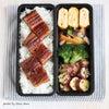 管理栄養士が教える「お弁当作りの秘密」の画像