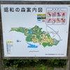 昭和の森公園♫の画像