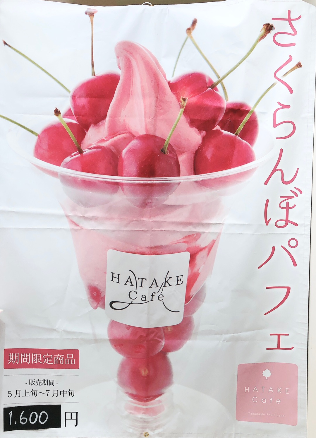 安倍元総理大臣やキョンキョンも来店する果樹園が経営するHATAKE Cafe