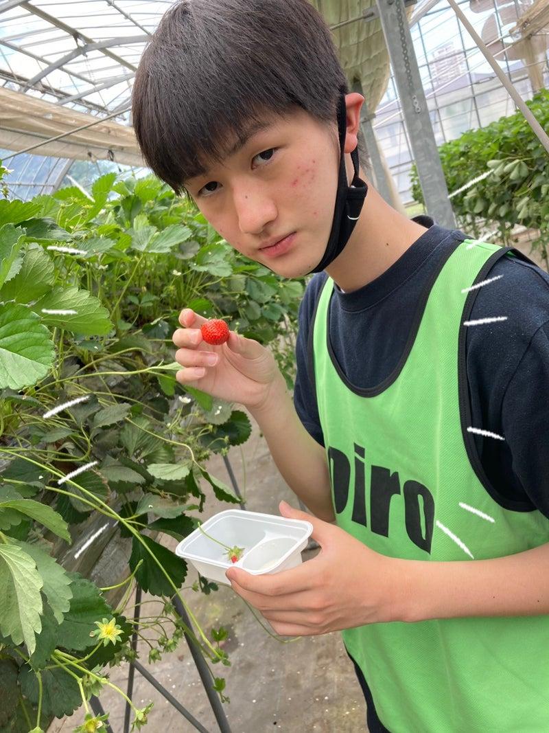 o1080144014947196898 - 5月23日(日)toiro川崎
