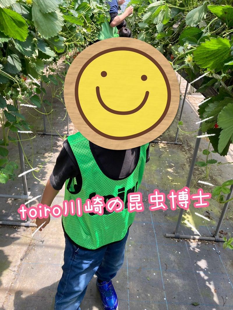 o1080144014947196904 - 5月23日(日)toiro川崎