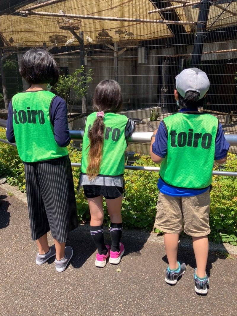 o1078144014947657470 - 5月23日(日) *toiro 東戸塚*