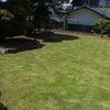 【教室便り】お庭で遊ぶ♪の画像
