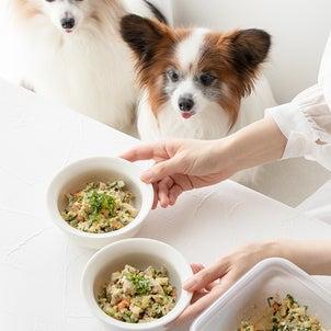 犬ごはんレシピ掲載★レンジだから簡単!まぐろチャーハンの画像