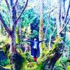 本日、白鳥哲監督が東京原宿に登場します!の画像