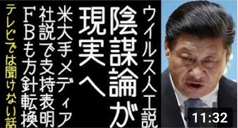改憲 君主 党 チャンネル