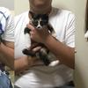 コウビン&たよ子、ベントレー、幸せの新しいお家へ♪の画像