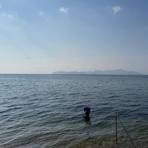 小鮎と遊ぶ 50(2021/5/29 浜釣りの〆は北小松)の画像