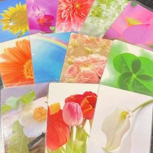 【ご感想】自分の生まれ持ったお花(魅力)を知るプチセラピーの画像