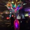 UWS アクアリウム アンダーウォータースペースの画像