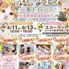 ◆ねこフェスinあまがさき◆◆2021·6/13(日)12:00~16:00◆入...の画像