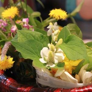 初夏の摘み菜セミナーを開催しました。の画像