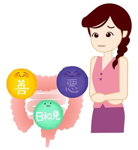 腸内細菌・腸内環境