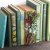 「父の日ギフト」お父さんの書斎(多肉植物)ブラウンAの画像