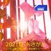 私は絡みつく…片思い~恋愛成就の花~あさがおを咲かせる!!プリンセス魔法占い館横浜磯子シーサイドの画像