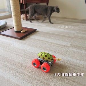 猫さんとネズミ自動車 前編の画像