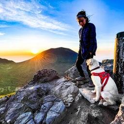 画像 夢の愛犬登山 の記事より 4つ目
