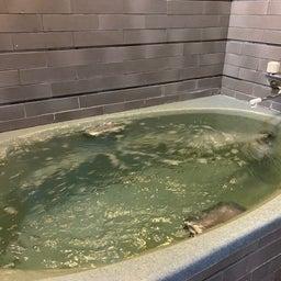 画像 小さいですが家族みんなで入れるお風呂綺麗になりました の記事より 1つ目