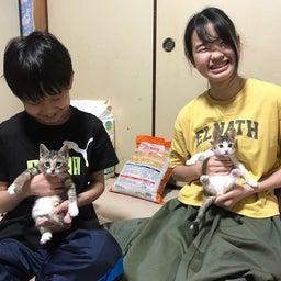 画像 シダちゃん&ダダちゃん、幸せの新しいお家へ♪ の記事より 9つ目