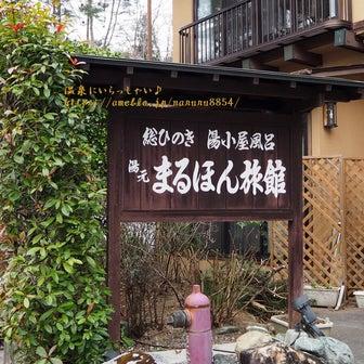 秘湯の宿 ☆ 沢渡温泉 まるほん旅館【宿泊記】