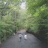 ニュー田代オートキャンプ場の画像