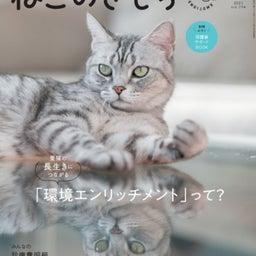 画像 【雑誌掲載】ねこのきもち7月号「心地いい猫トイレ」 の記事より 2つ目